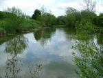 Whiteposts Lakes